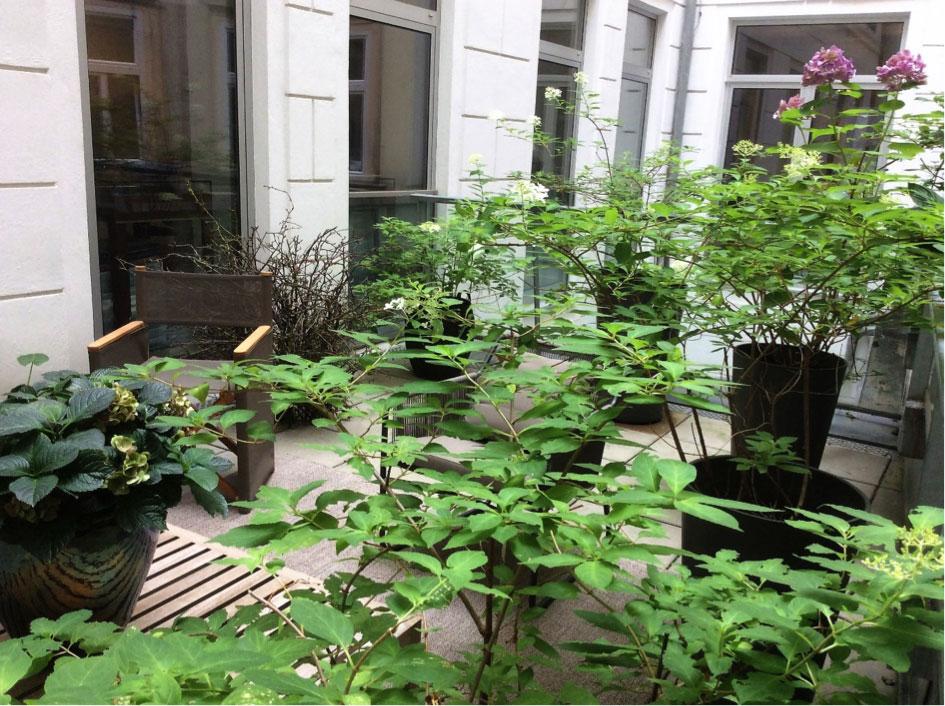 JETZT! Eternit-Outdoor-Gardening: Frische Bepflanzung für Balkon und Terrasse